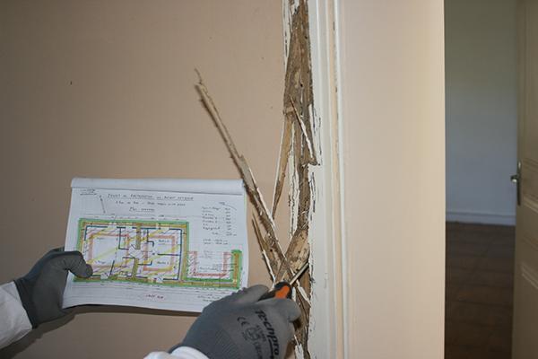 Traitement termites diagnostiques - renforcement et traitement structures bois - Maindron